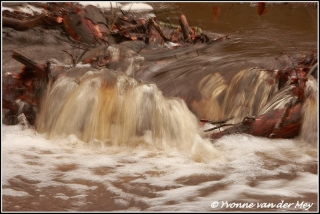 Waterval in hierdense / Beek waterfall (Copyright Yvonne van der Mey)