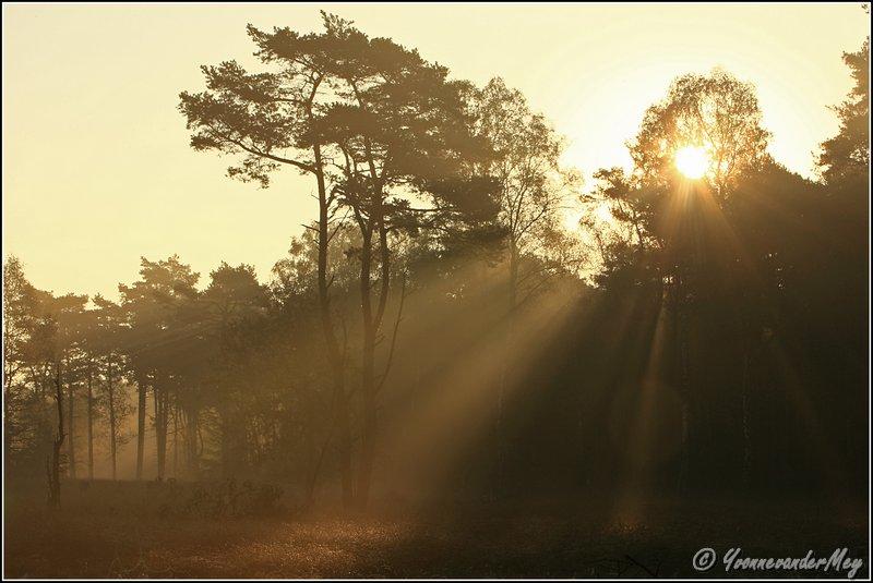 Adembenemend-mooie-zonsopgang-copyright-YvonnevanderMey