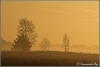 serene-sfeer-copyright-yvonnevandermey