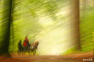 Ghostrider-copyright-YvonnevanderMey