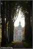 Zichtas oudgroevenbeek (Copyright Yvonne van der Mey)