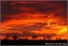 Zonsopgang ten noorden van Shingwedzi/Sunrise north of Shingwezi (copyright Yvonne van der Mey)