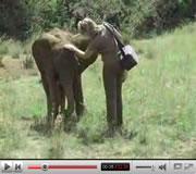 Bekijk de video over de werk van Yvonne in Kenia